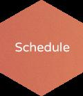 ISL Schedule API